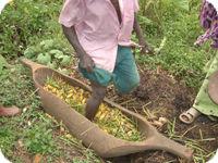 ウガンダの地酒