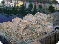 漁師の町で感じたこと