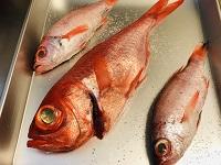 魚屋さんで丸のままの魚を買う