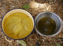 トウモロコシのパットと野菜ソース