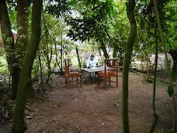 木に囲まれた執務室に座るカリャンゴさん